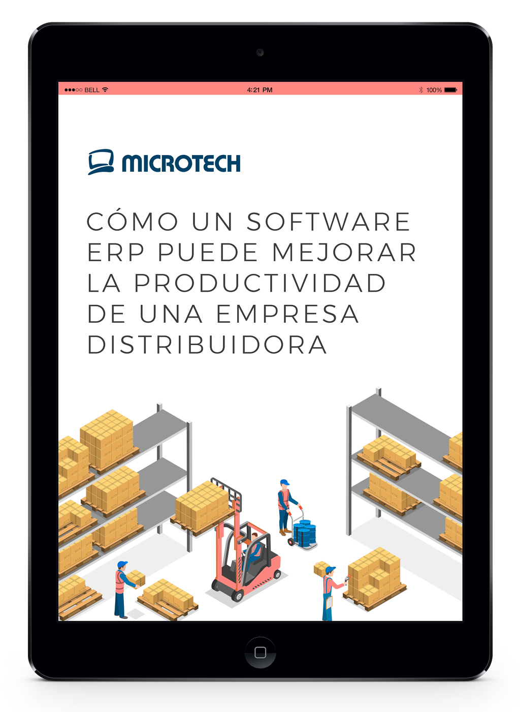 software-erp-distribuidoras