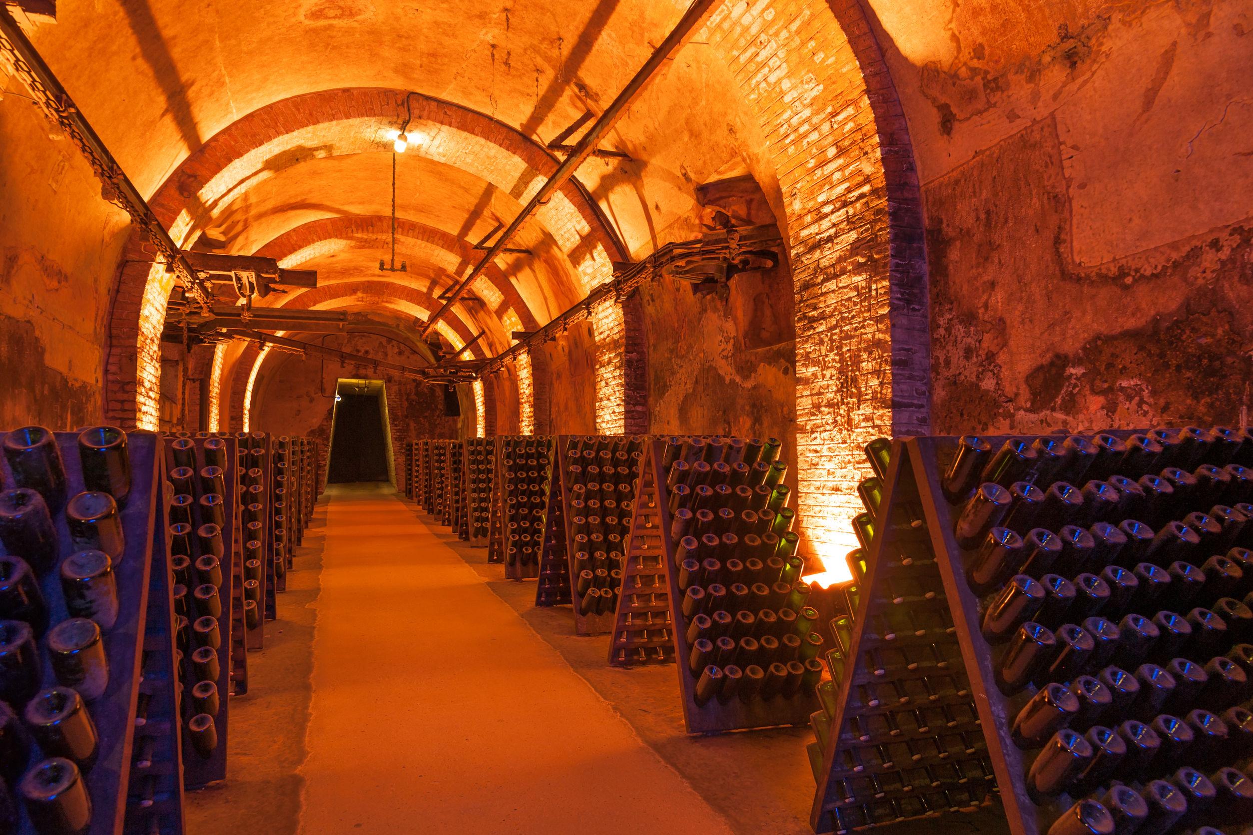 Iniciativas digitales y tecnológicas aplicadas en el sector vitivinícola frente al COVID-19