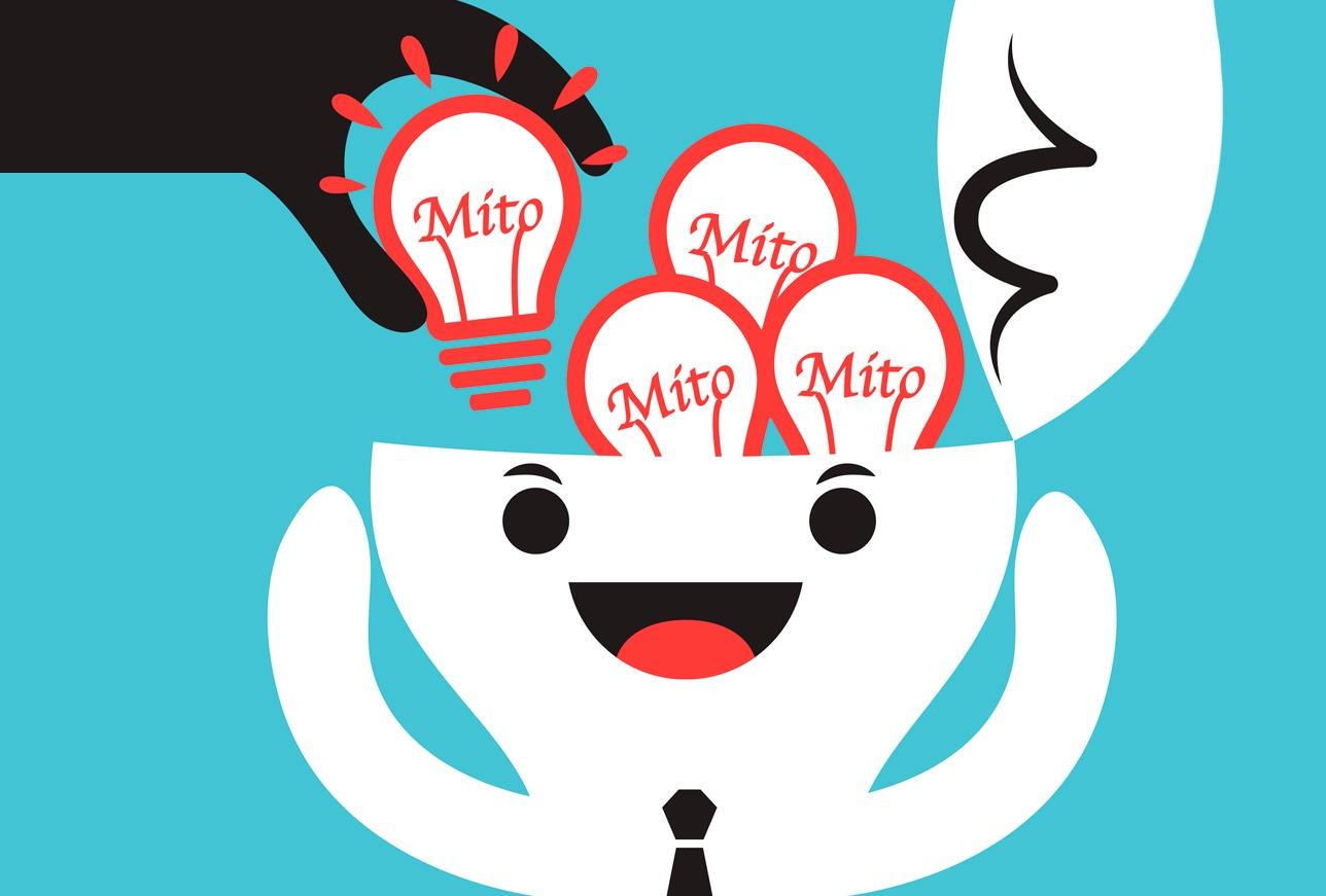 5 mitos del software ERP que las empresas deben saber